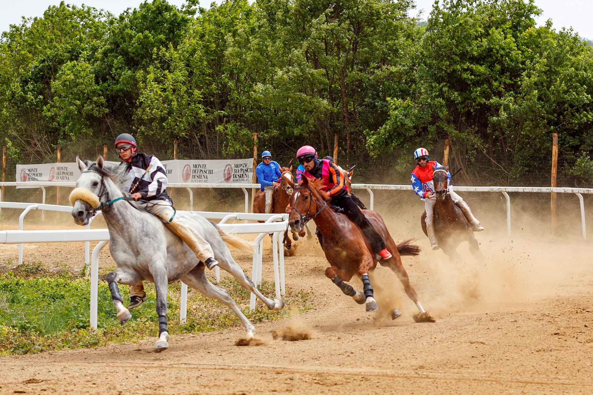 CORSE PROVA D'ADDESTRAMENTO - La corsa consente agli addetti ai lavori di verificare il comportamento e dei cavalli sul tufo e su un percorso caratterizzato da curve a 90° e pendenze del tutto uguali a quelle presenti in Piazza del Campo a Siena.