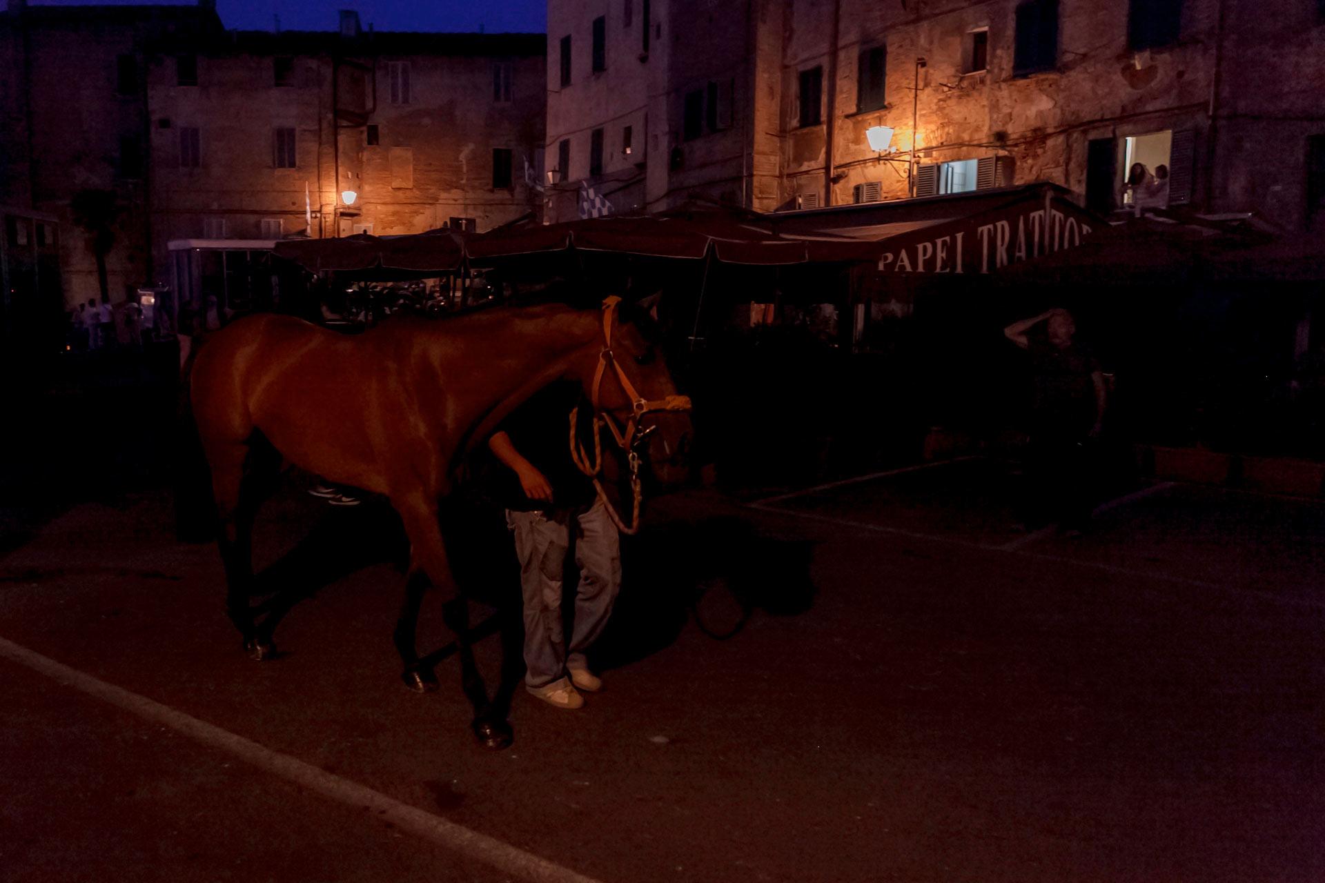 LE CORSE DI NOTTE - Ci siamo, i giorni del Palio sono alle porte. Appuntamento con il Barbaresco all'alba in Piazza del Mercato. È lì che arrivano tutti i cavalli a bordo dei loro Van attrezzati per il trasporto in sicurezza.