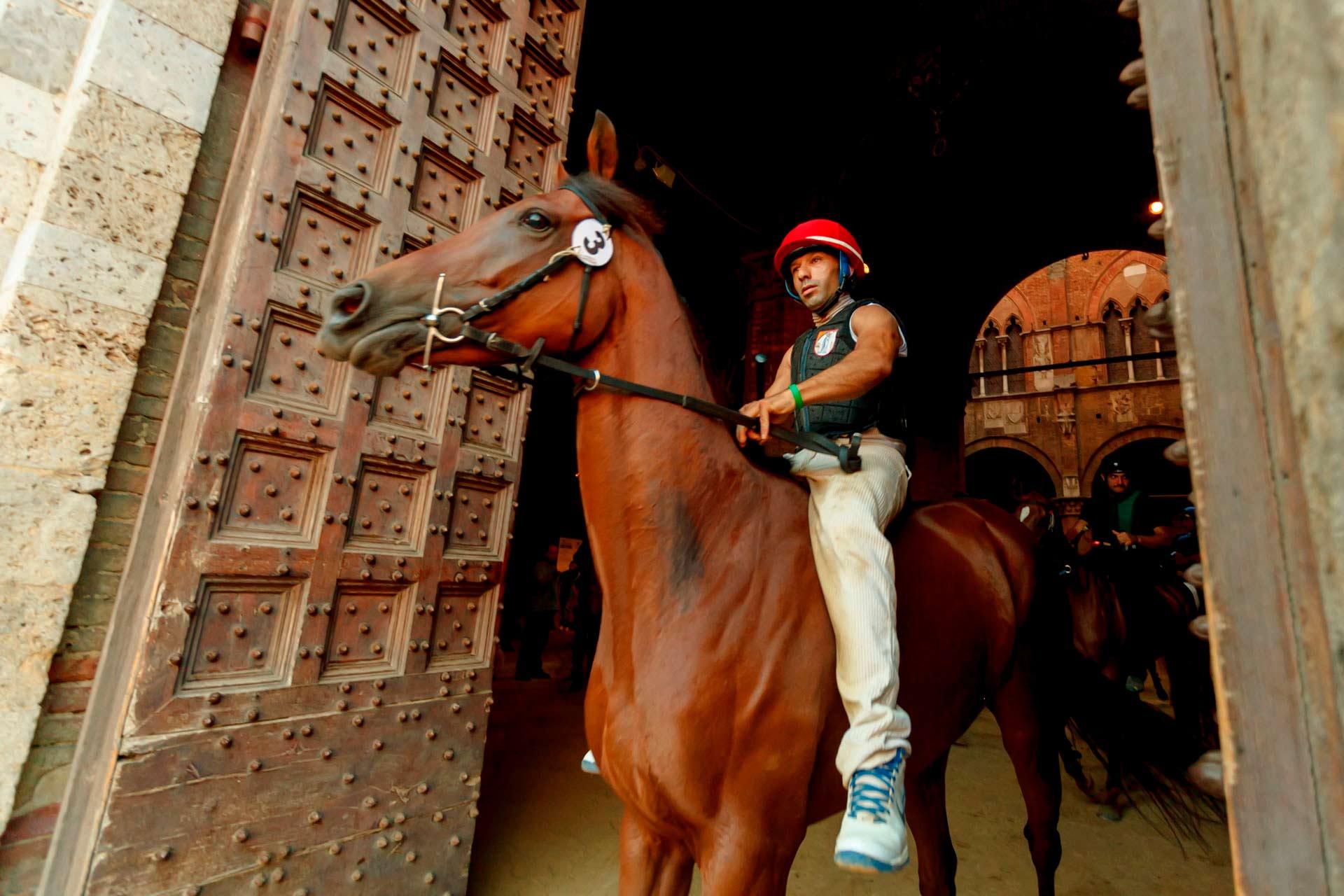 """LE CORSE DI NOTTE - La prima """"batteria"""" è pronta per scendere in campo. Tutti i cavalli portano un cartello numerato per la loro identificazione attaccato alla testiera."""
