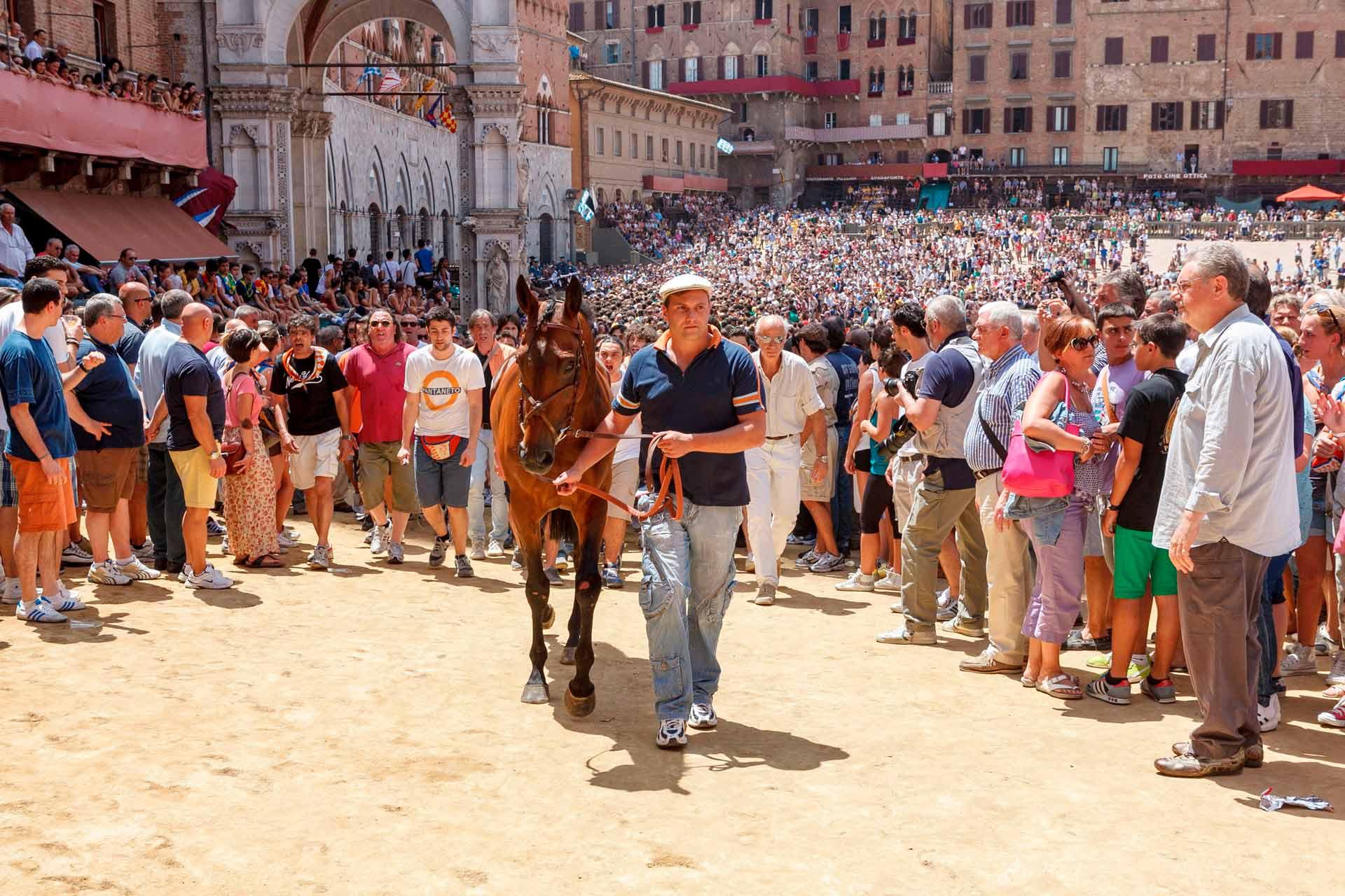 IL SORTEGGIO - Una volta ricevuto il cavallo sorteggiato, la Contrada, tramite il proprio Barbaresco, lo prende in consegna fino a palio corso. Il cavallo non potrà essere sostituito per nessun motivo.